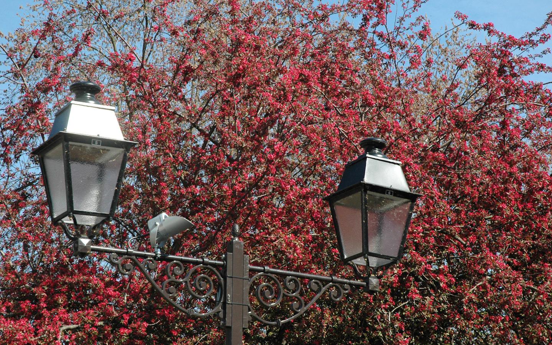 Un lampadaire dans un parc à Colmar
