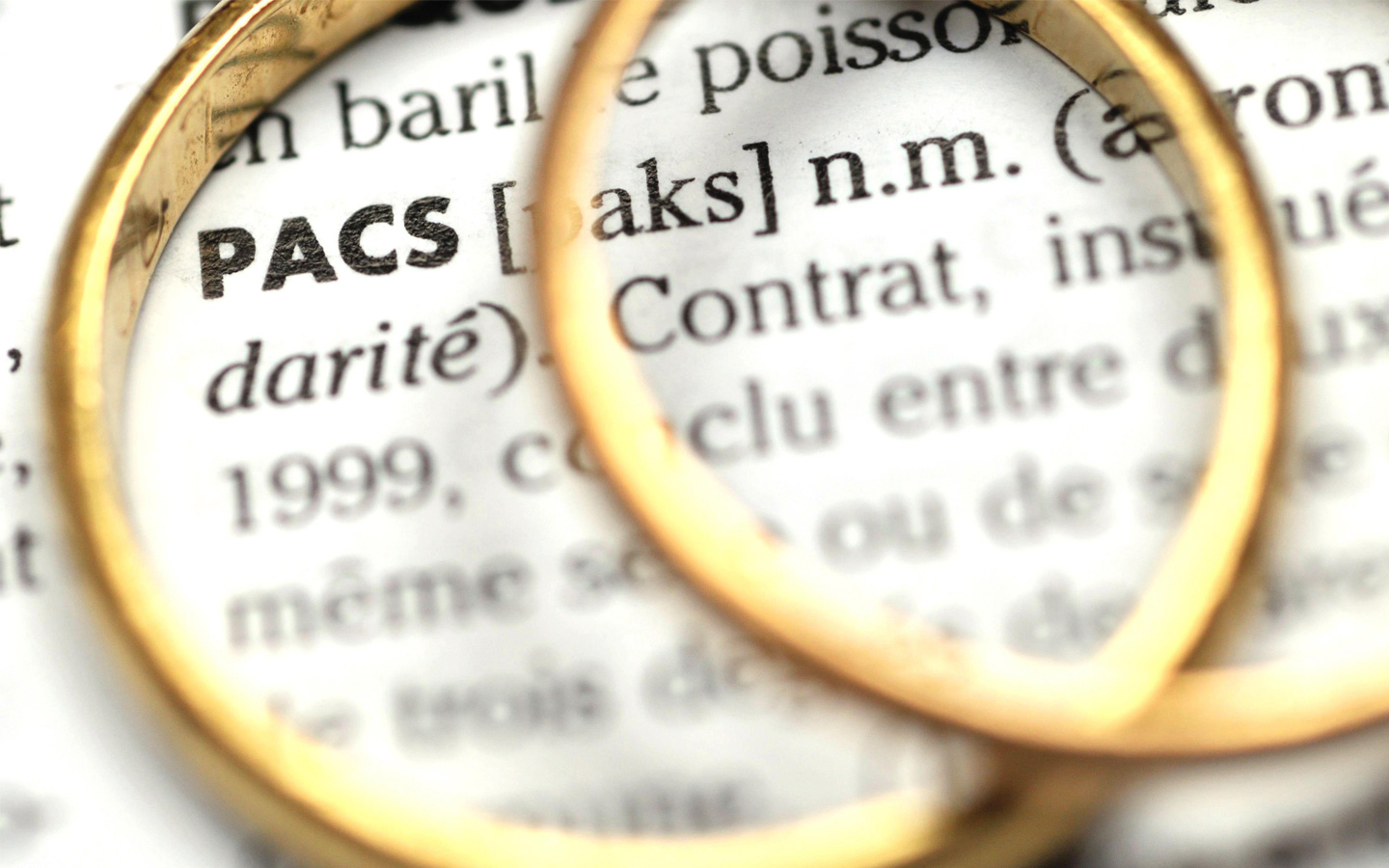 Le PActe Civil de Solidarité (PACS)