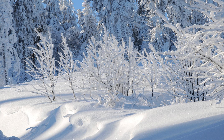 Photo d'un paysage enneigé au Lac Blanc