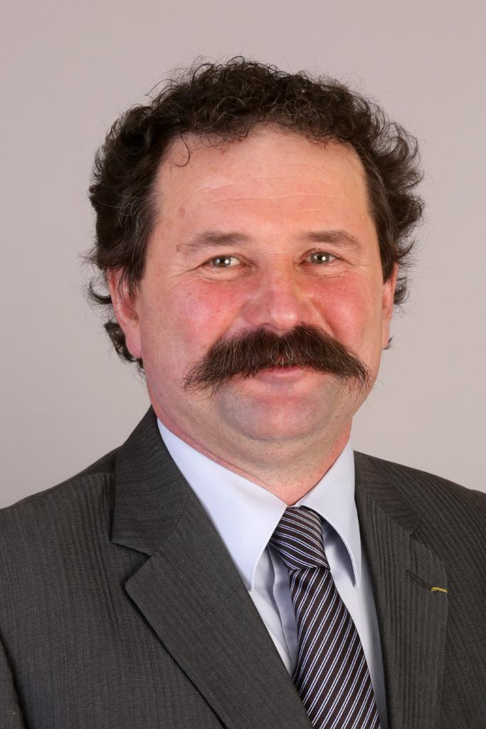 Serge Hanauer